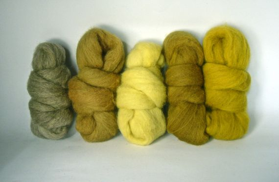 Masham fibre bundle