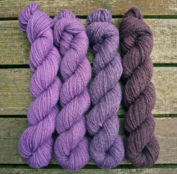 Lethera Shetland Gradient - Dilly Dilly